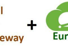API Gateway with Zuul and Eureka